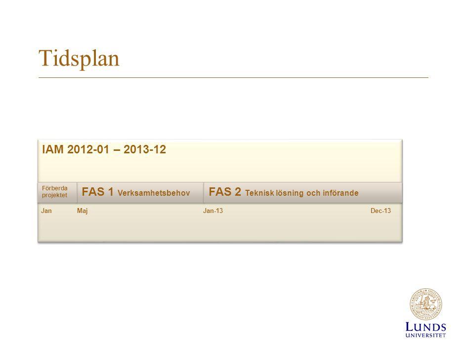Tidsplan IAM 2012-01 – 2013-12 FAS 1 Verksamhetsbehov