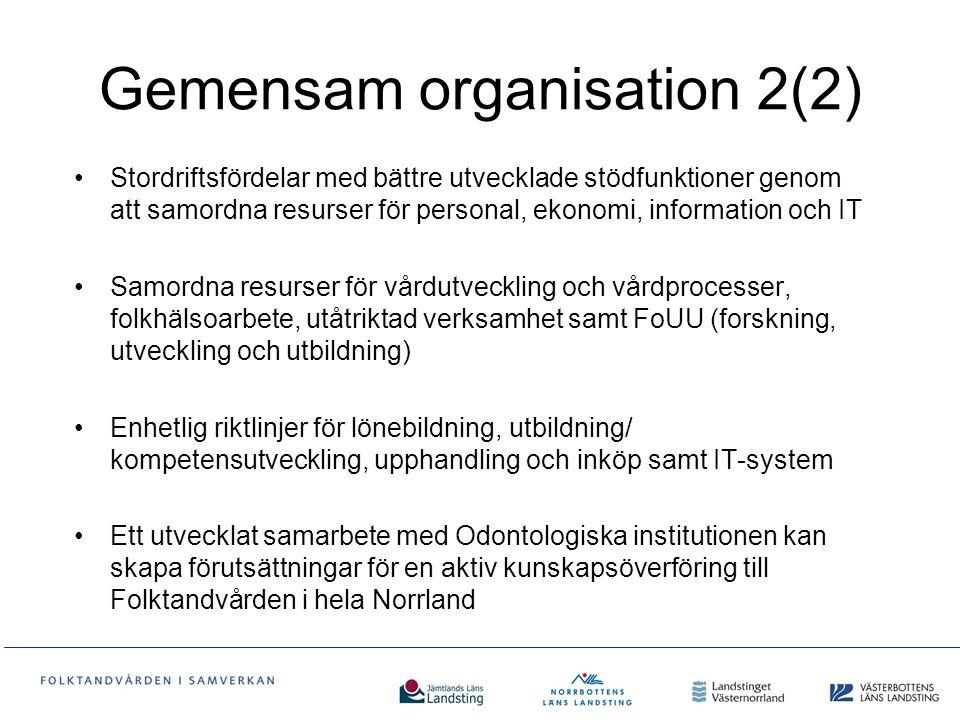 Gemensam organisation 2(2)