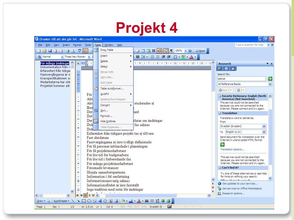Projekt 4 Typ av system: kommersiell produkt, administrativt, standard plattform = office. Typ av organisation: Branschorganisation.