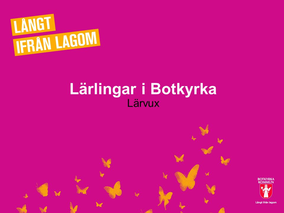 Lärlingar i Botkyrka Lärvux 2012-07-131