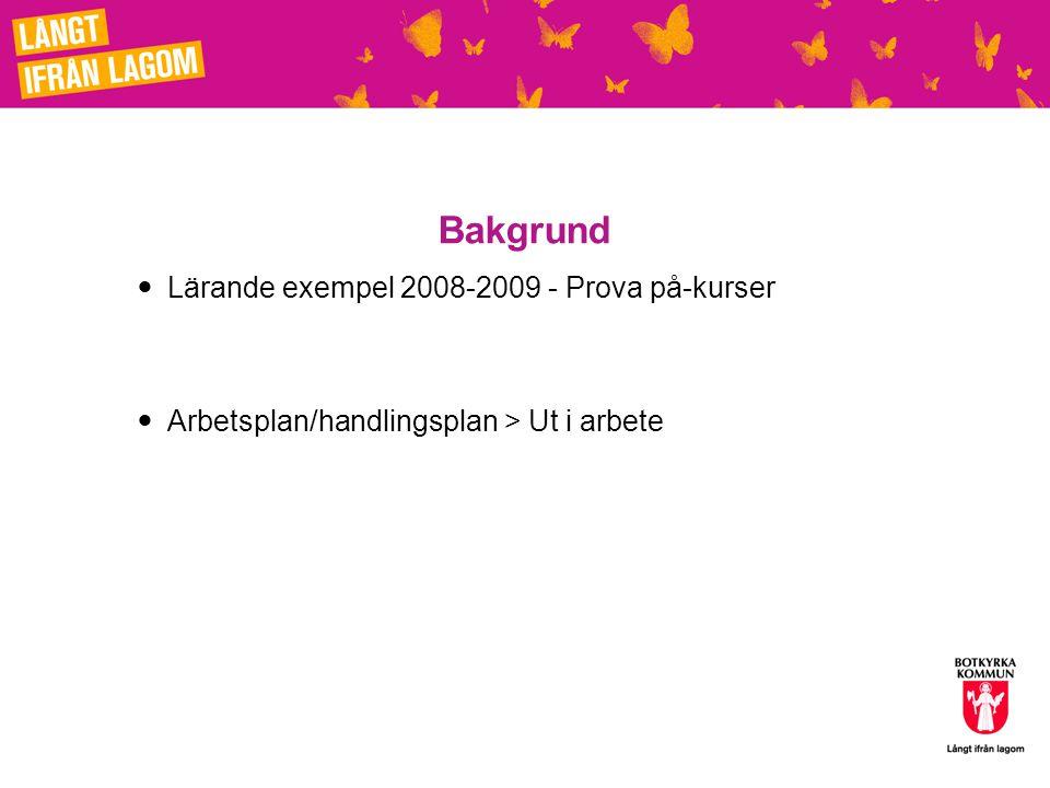 Bakgrund Lärande exempel 2008-2009 - Prova på-kurser