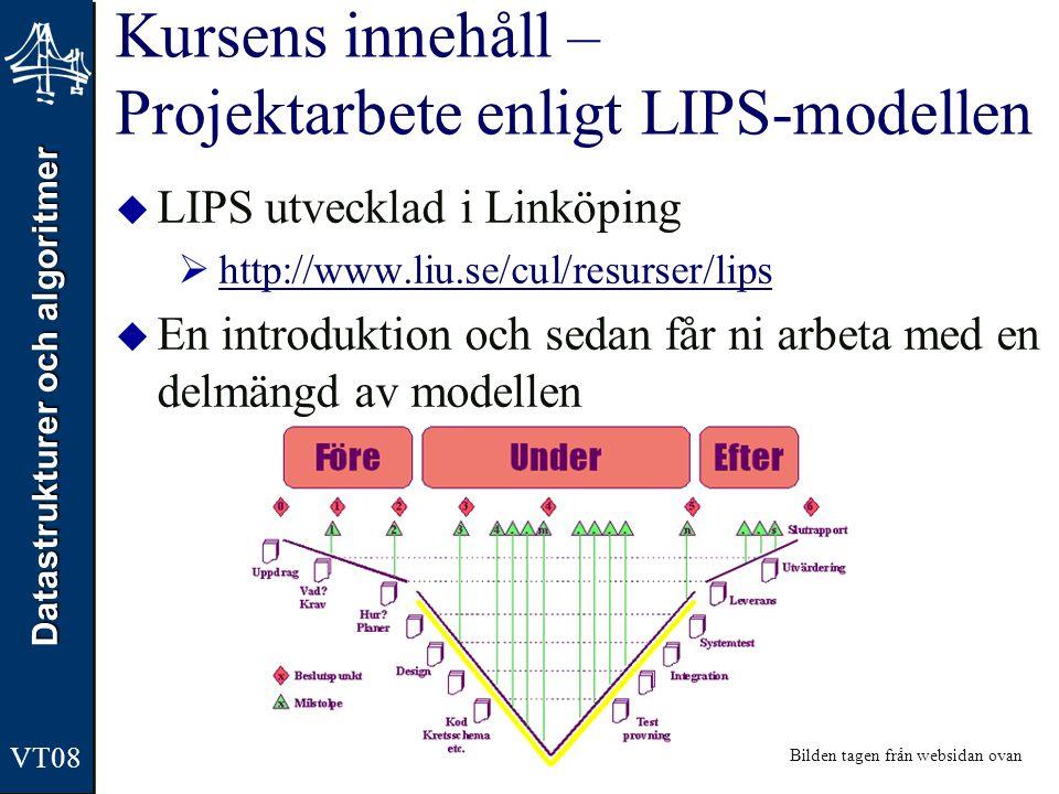 Kursens innehåll – Projektarbete enligt LIPS-modellen