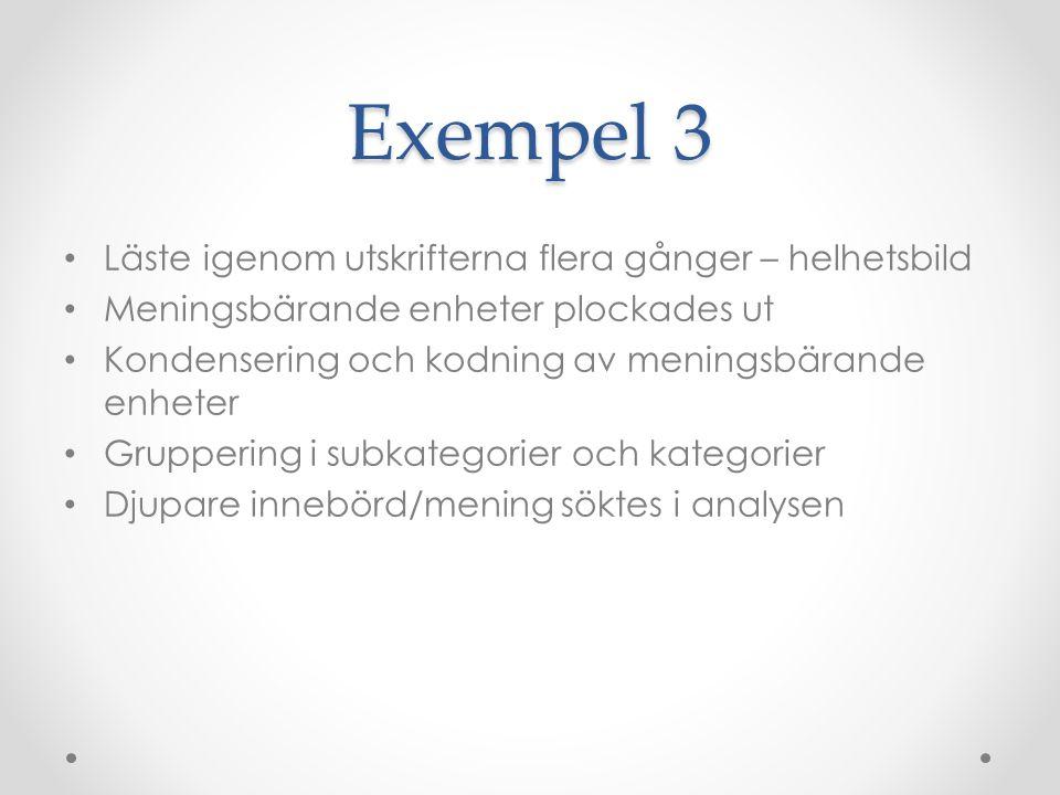 Exempel 3 Läste igenom utskrifterna flera gånger – helhetsbild