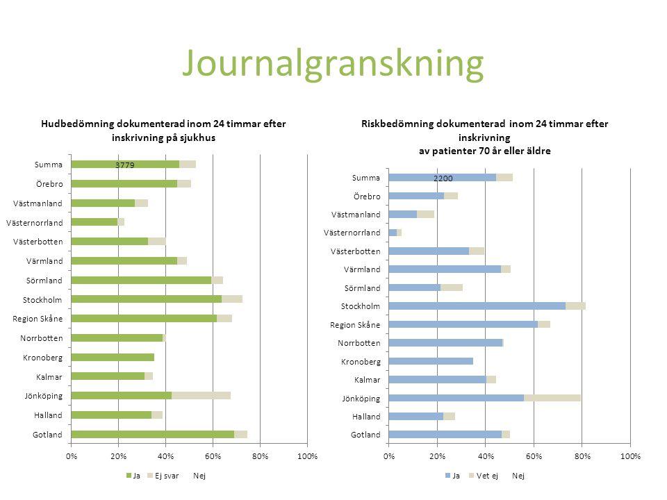 Journalgranskning