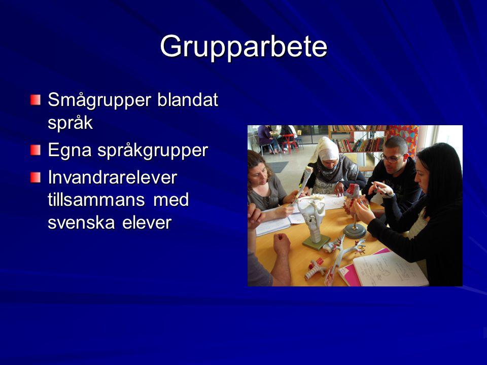 Grupparbete Smågrupper blandat språk Egna språkgrupper
