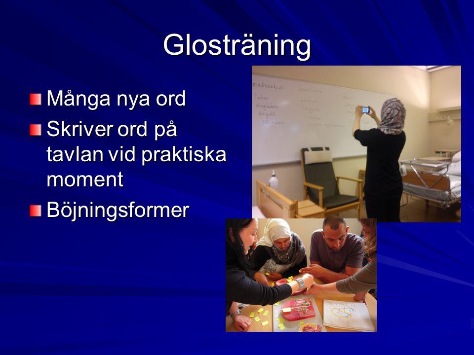 Glosträning Många nya ord Skriver ord på tavlan vid praktiska moment