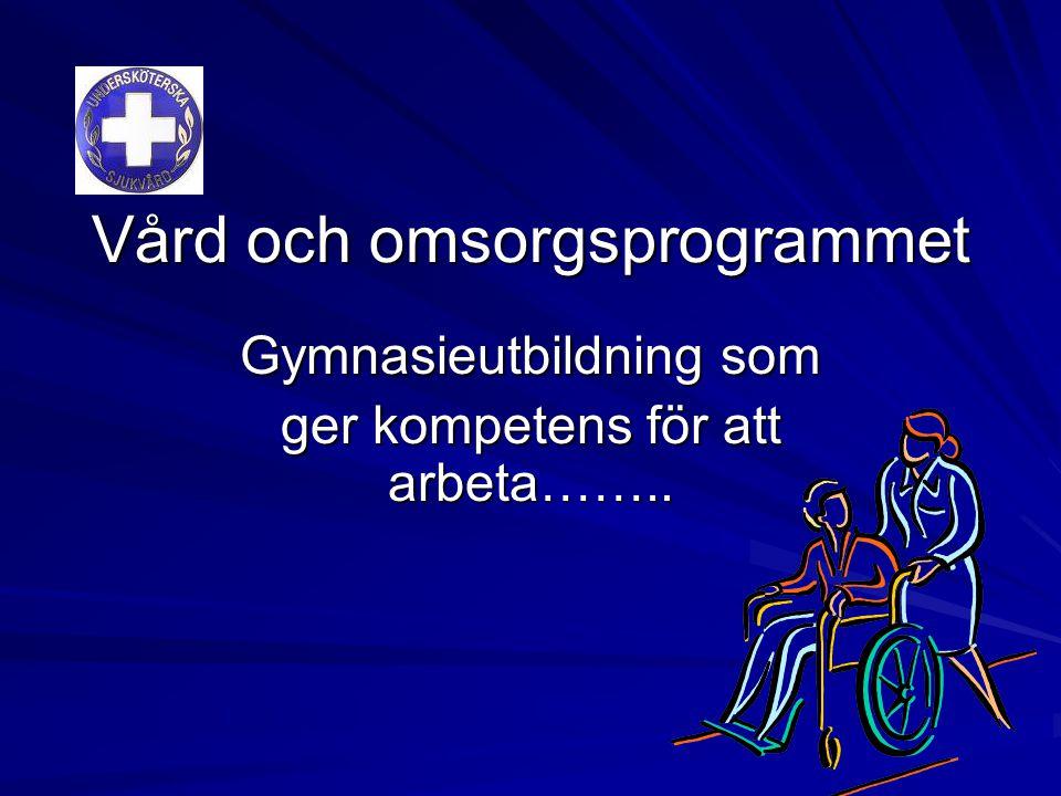 Vård och omsorgsprogrammet