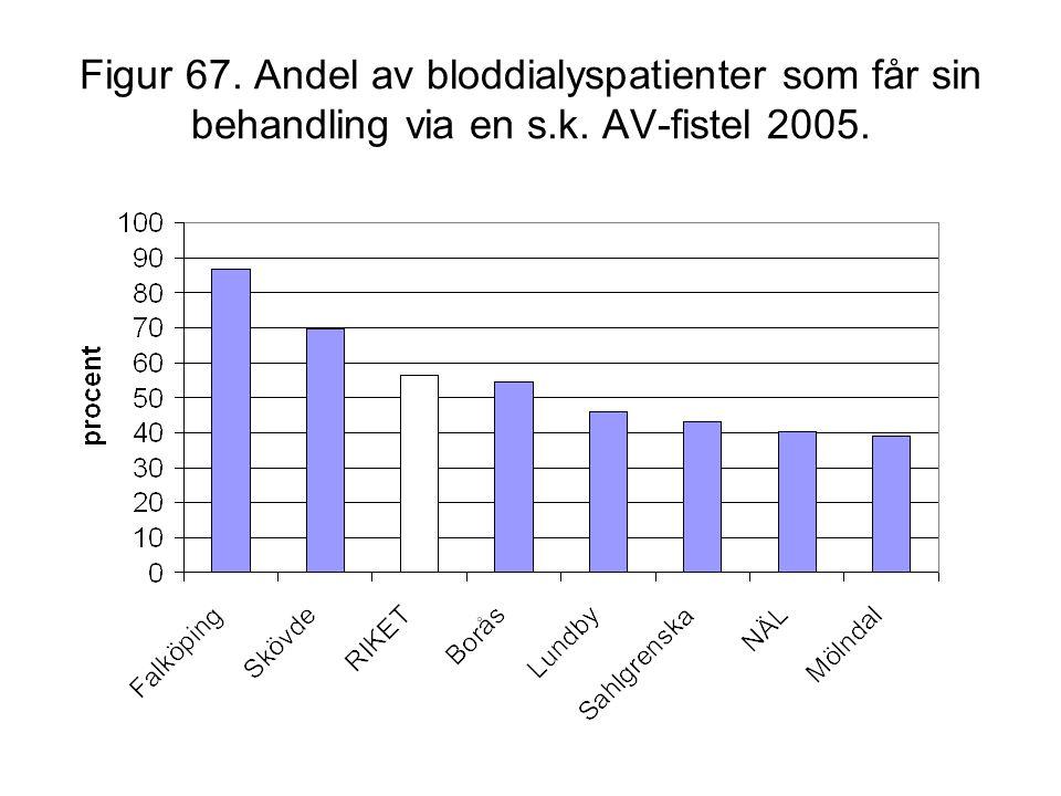 Figur 67. Andel av bloddialyspatienter som får sin behandling via en s