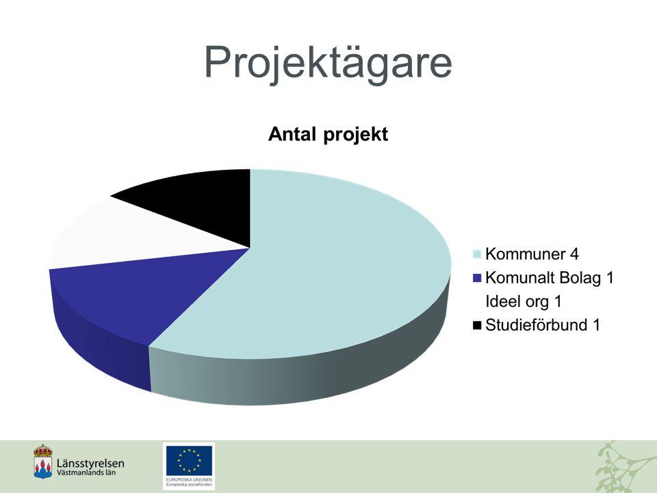 Projektägare