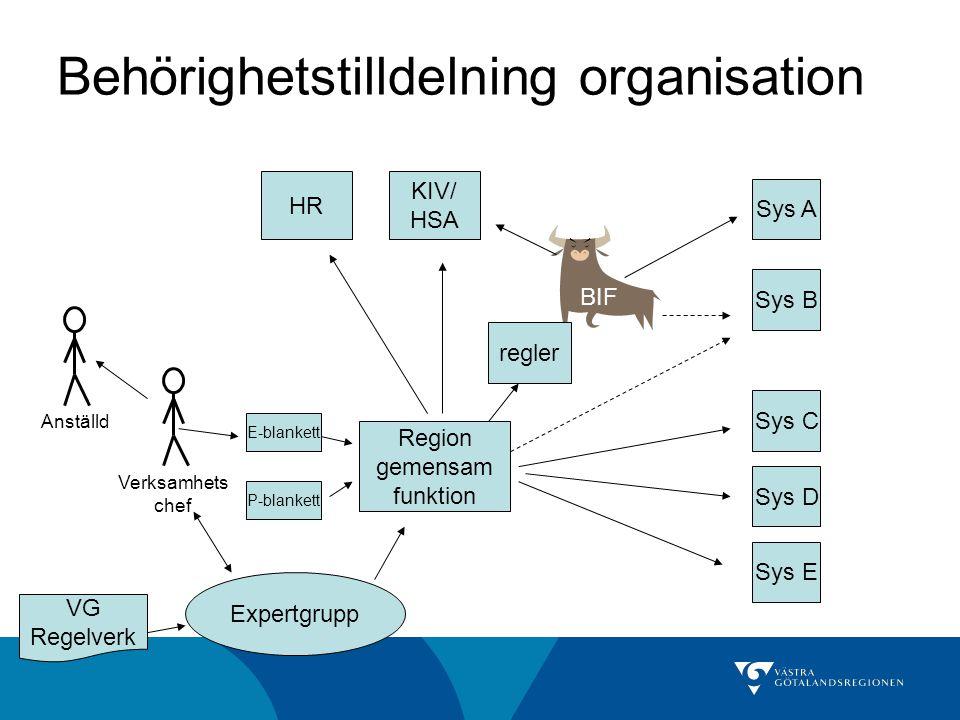 Behörighetstilldelning organisation