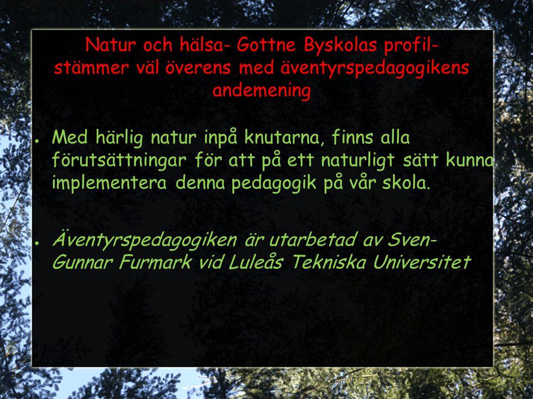Natur och hälsa- Gottne Byskolas profil- stämmer väl överens med äventyrspedagogikens andemening