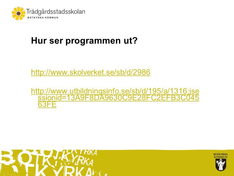 Hur ser programmen ut http://www.skolverket.se/sb/d/2986