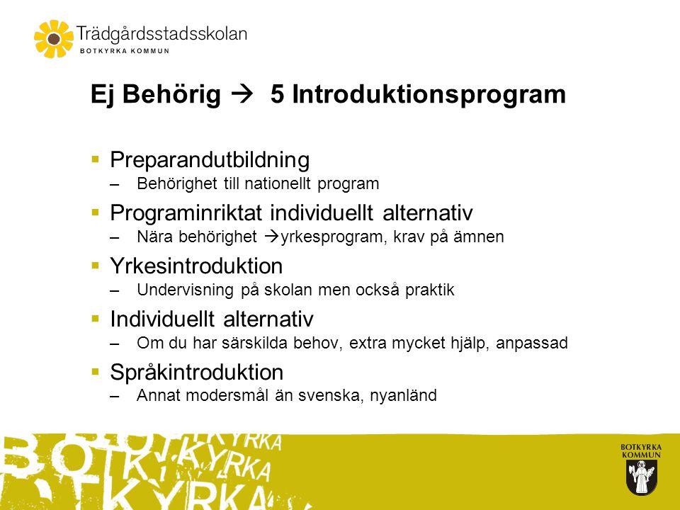 Ej Behörig  5 Introduktionsprogram