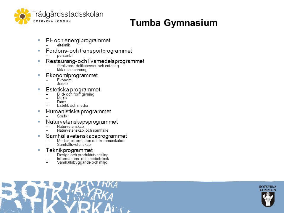 Tumba Gymnasium El- och energiprogrammet