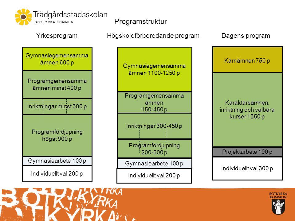 Programstruktur Yrkesprogram Högskoleförberedande program