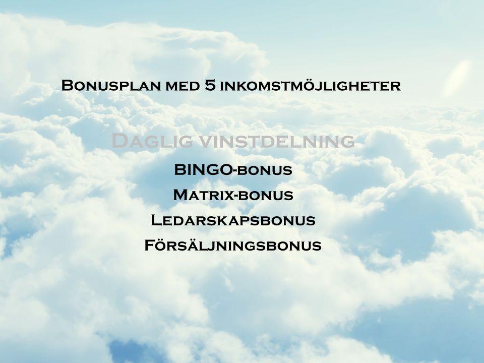 Daglig vinstdelning Bonusplan med 5 inkomstmöjligheter BINGO-bonus