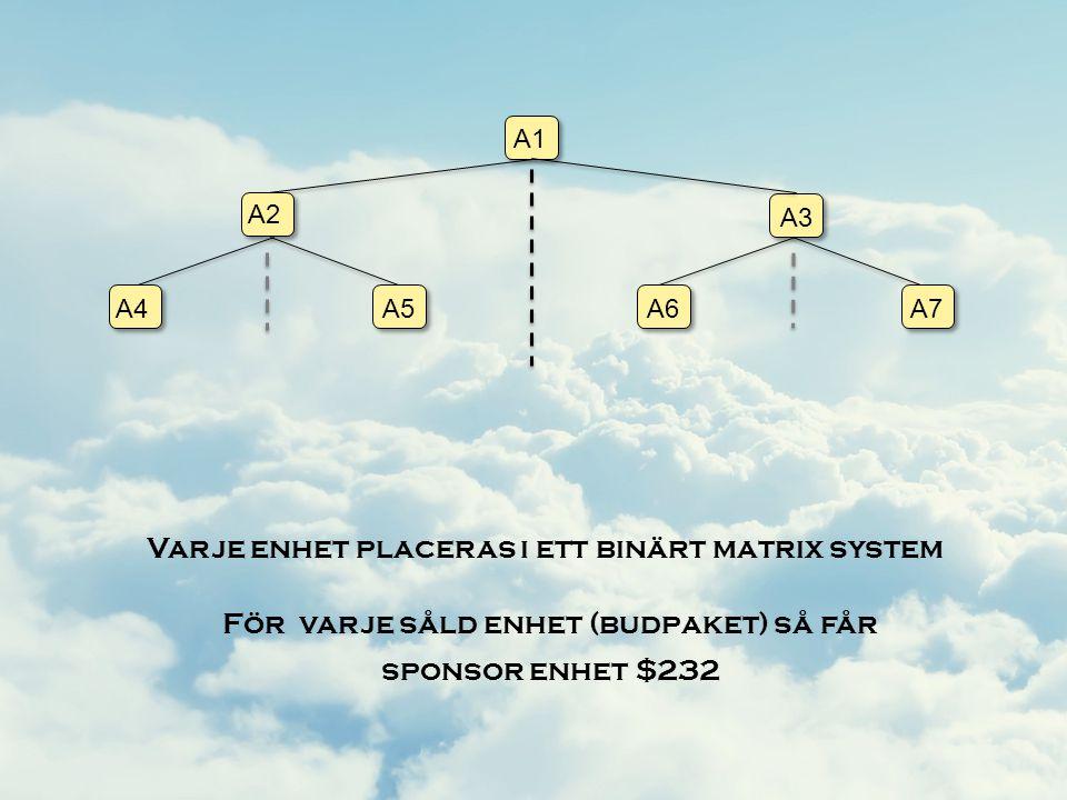 Varje enhet placeras i ett binärt matrix system