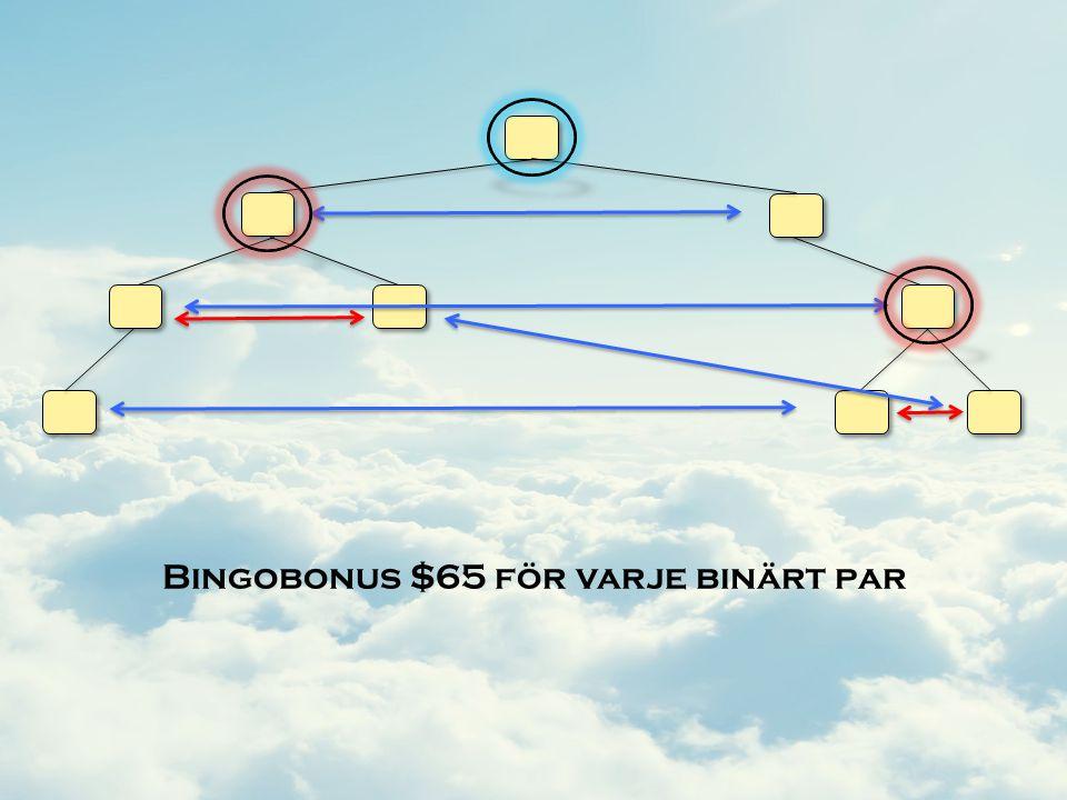 Bingobonus $65 för varje binärt par