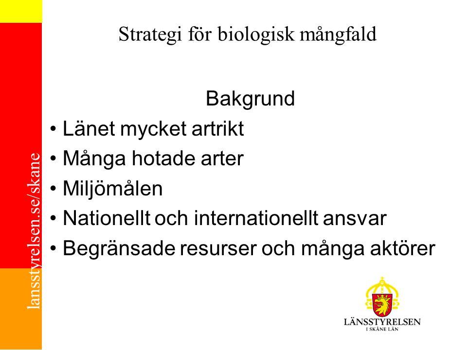 Strategi för biologisk mångfald