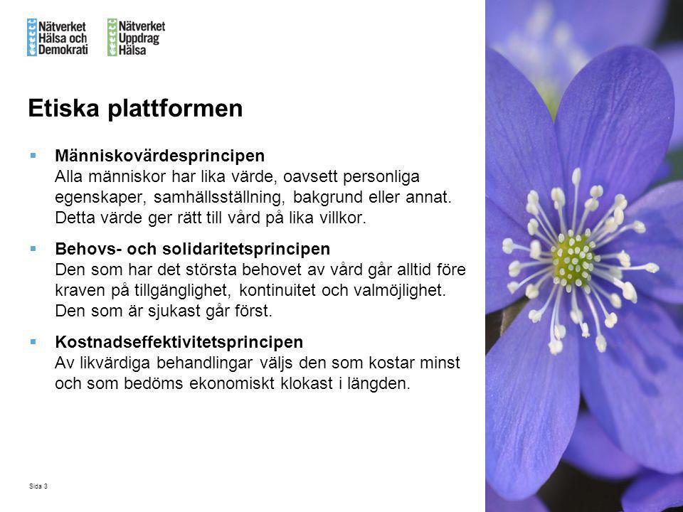 Etiska plattformen