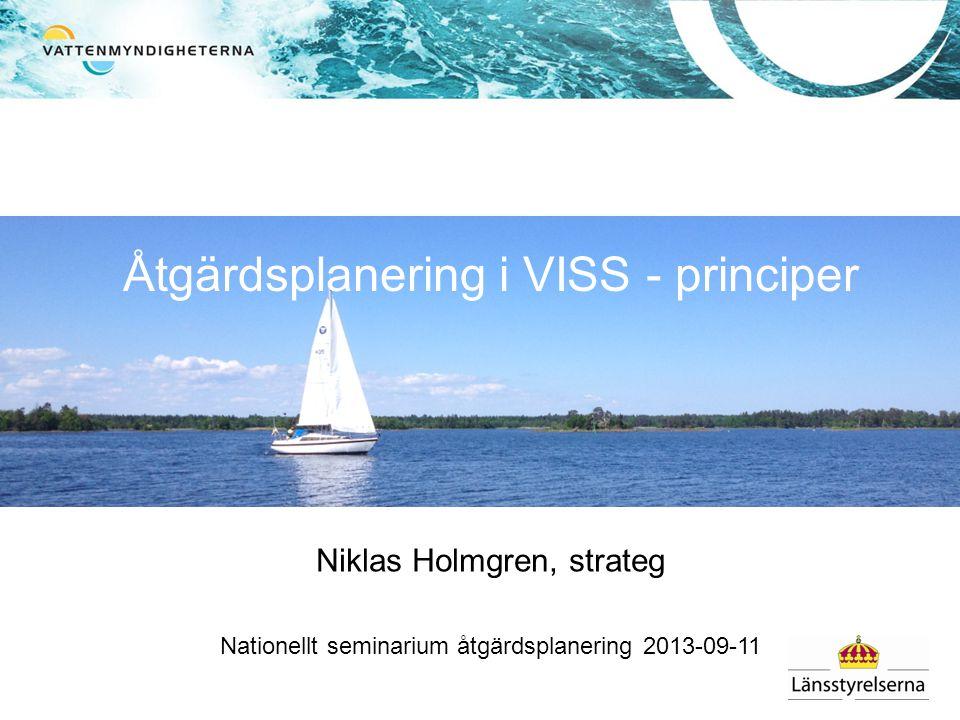 Åtgärdsplanering i VISS - principer