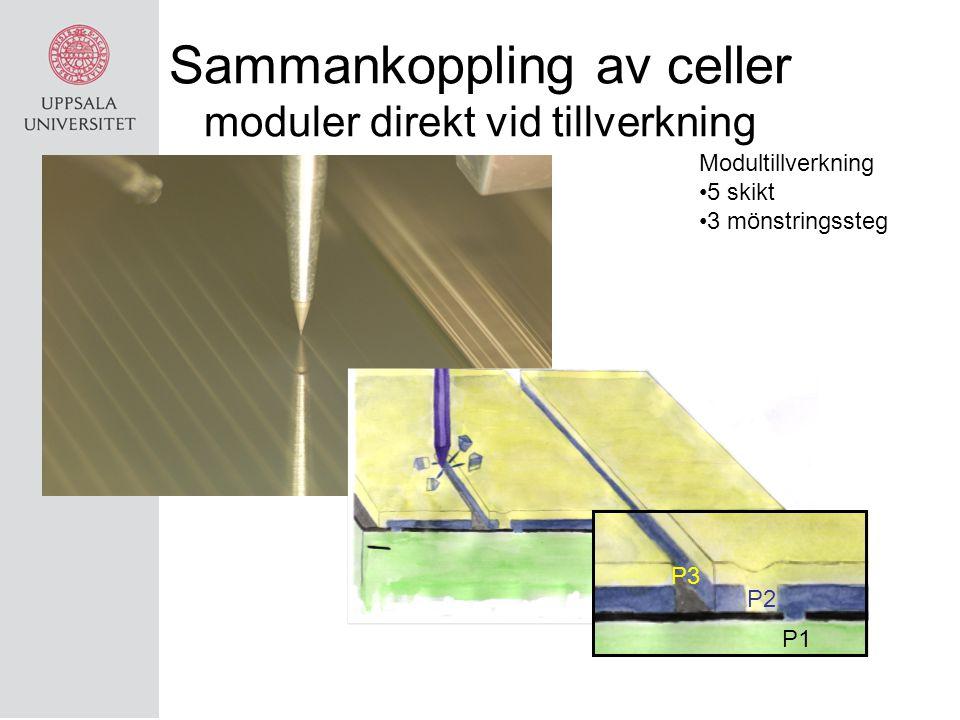 Sammankoppling av celler moduler direkt vid tillverkning