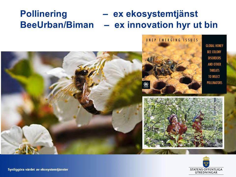 Pollinering – ex ekosystemtjänst