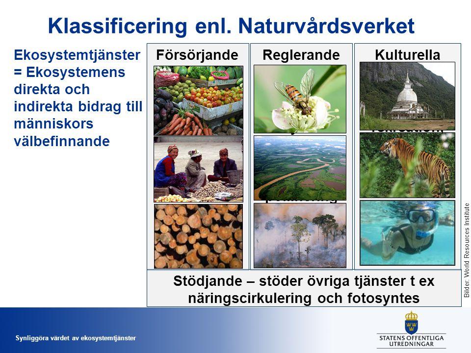 Varor som produceras av ekosystemet som fisk, timmer, frukt mm