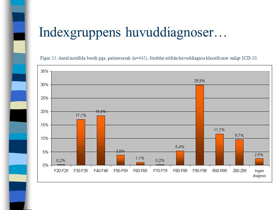 Indexgruppens huvuddiagnoser…