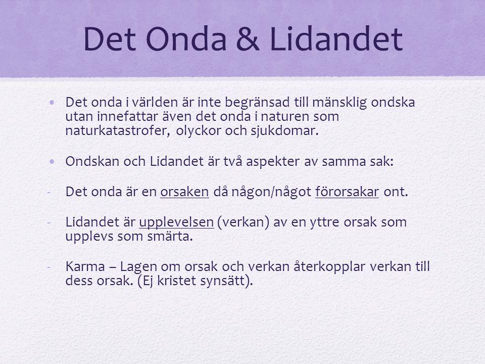 Det Onda & Lidandet