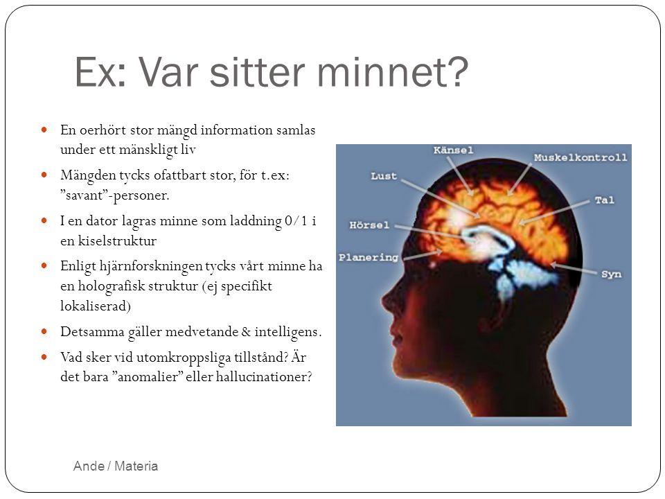 Ex: Var sitter minnet En oerhört stor mängd information samlas under ett mänskligt liv.