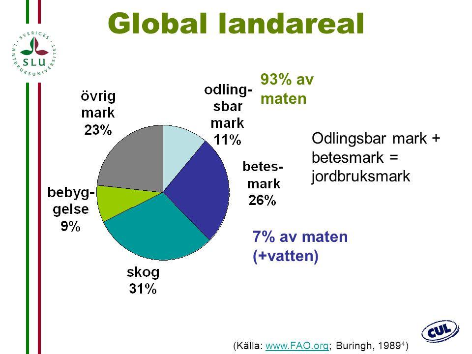 Global landareal 93% av maten