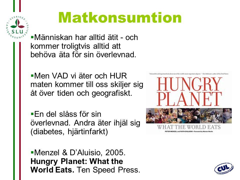 Matkonsumtion Människan har alltid ätit - och kommer troligtvis alltid att behöva äta för sin överlevnad.