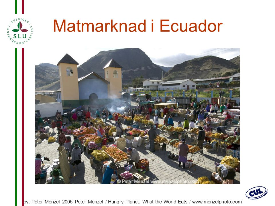 Matmarknad i Ecuador by: Peter Menzel 2005 Peter Menzel / Hungry Planet: What the World Eats / www.menzelphoto.com.
