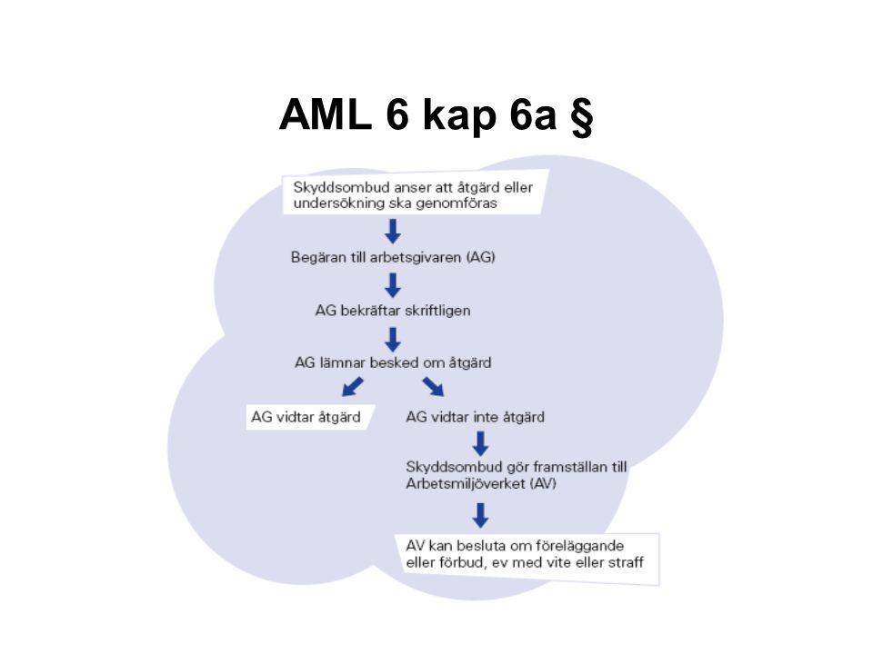 AML 6 kap 6a §