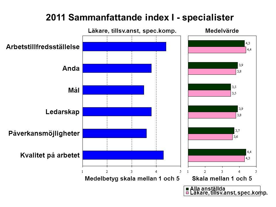 2011 Sammanfattande index I - specialister