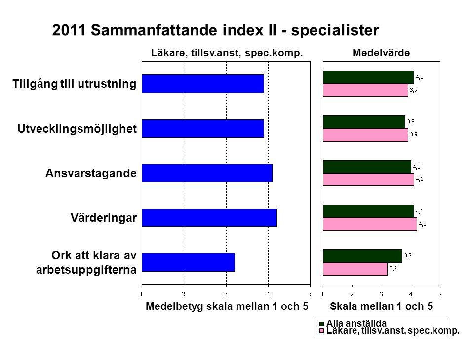 2011 Sammanfattande index II - specialister