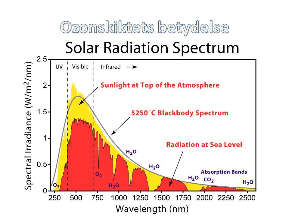 Ozonskiktets betydelse