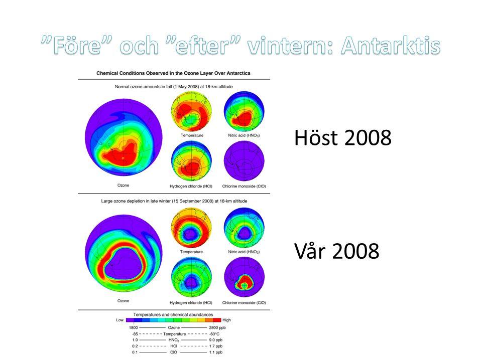 Före och efter vintern: Antarktis