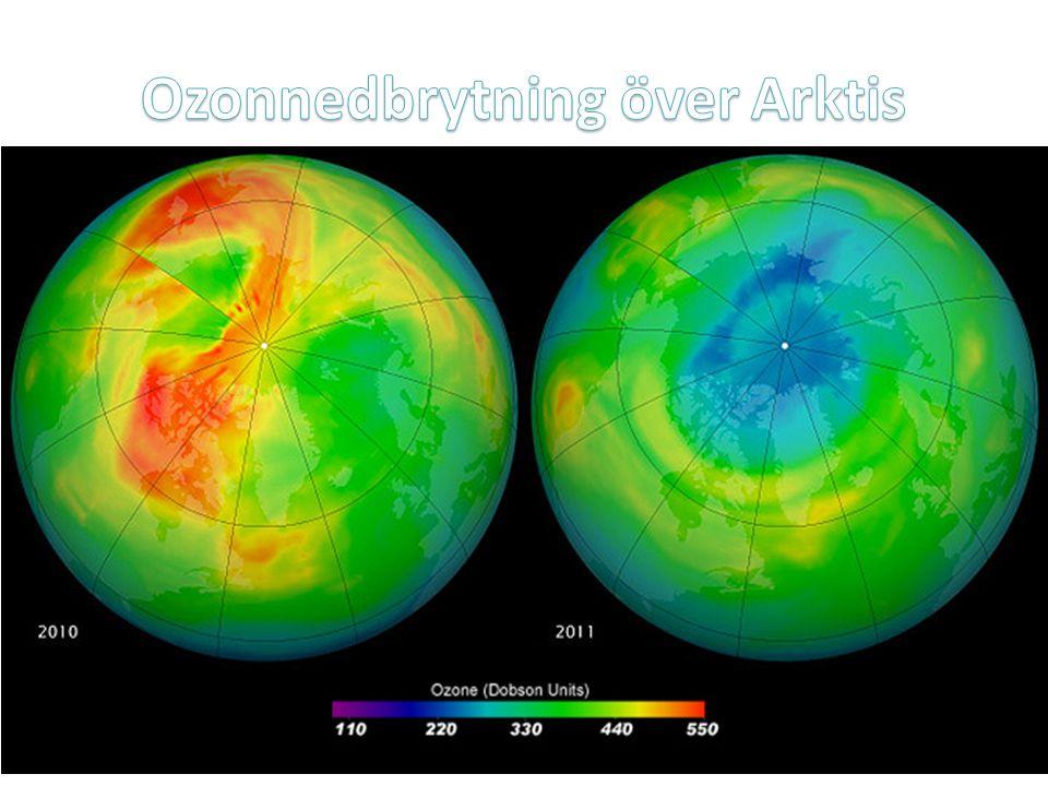 Ozonnedbrytning över Arktis
