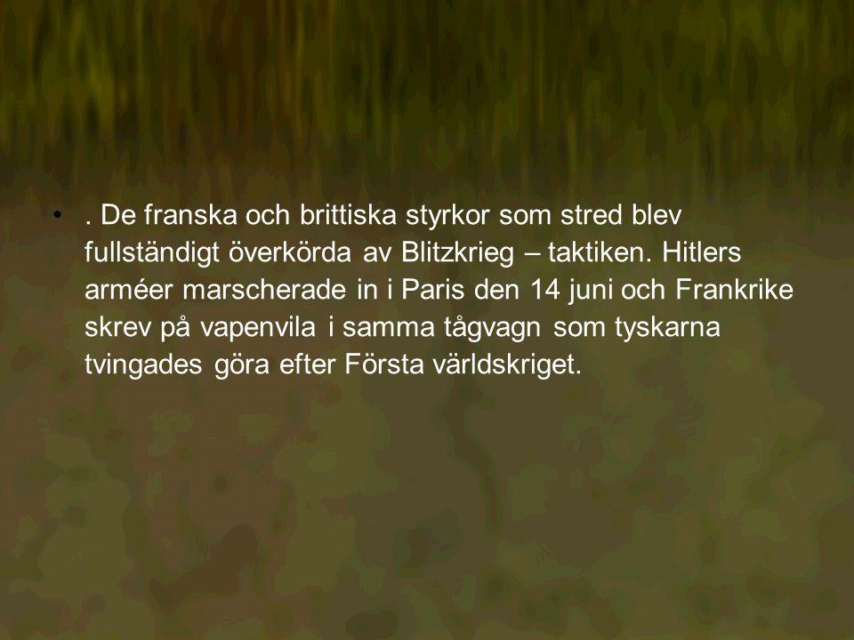 De franska och brittiska styrkor som stred blev fullständigt överkörda av Blitzkrieg – taktiken.