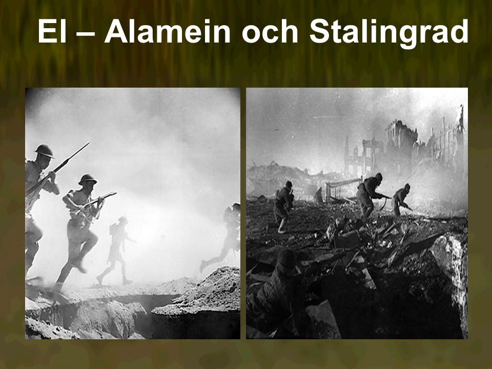 El – Alamein och Stalingrad