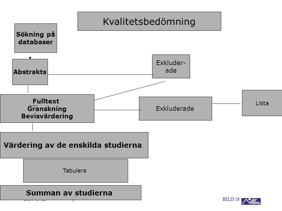 Värdering av de enskilda studierna