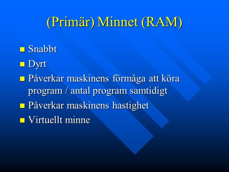 (Primär) Minnet (RAM) Snabbt Dyrt