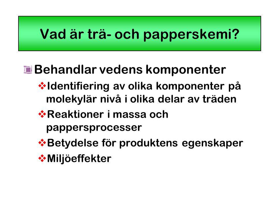 Vad är trä- och papperskemi