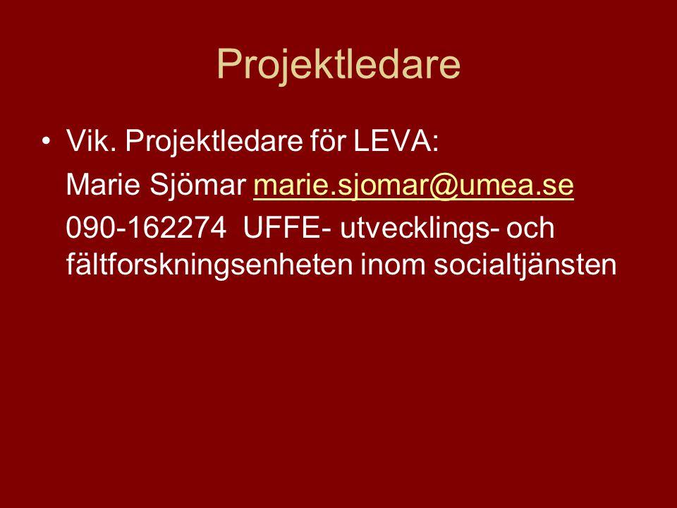 Projektledare Vik. Projektledare för LEVA: