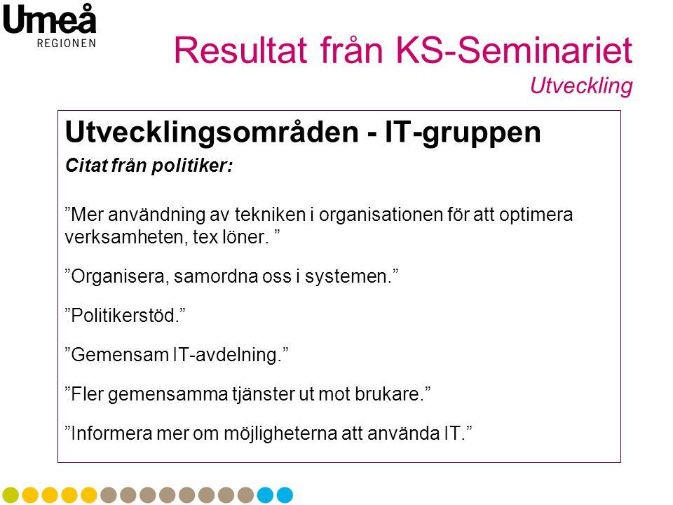 Resultat från KS-Seminariet Utveckling