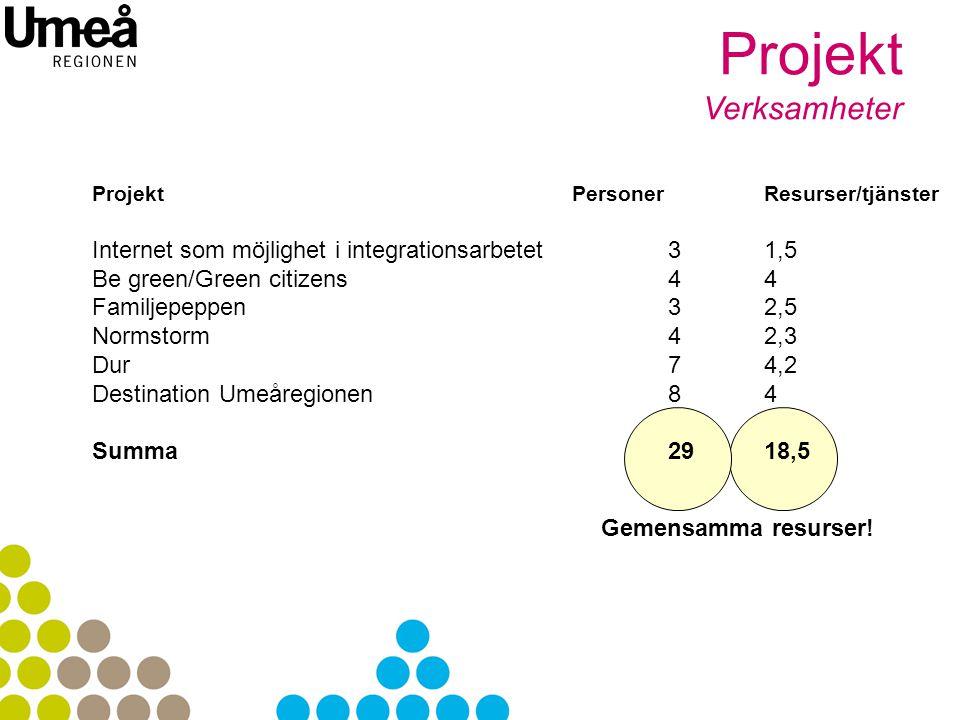 Projekt Verksamheter. Projekt Personer Resurser/tjänster. Internet som möjlighet i integrationsarbetet 3 1,5.