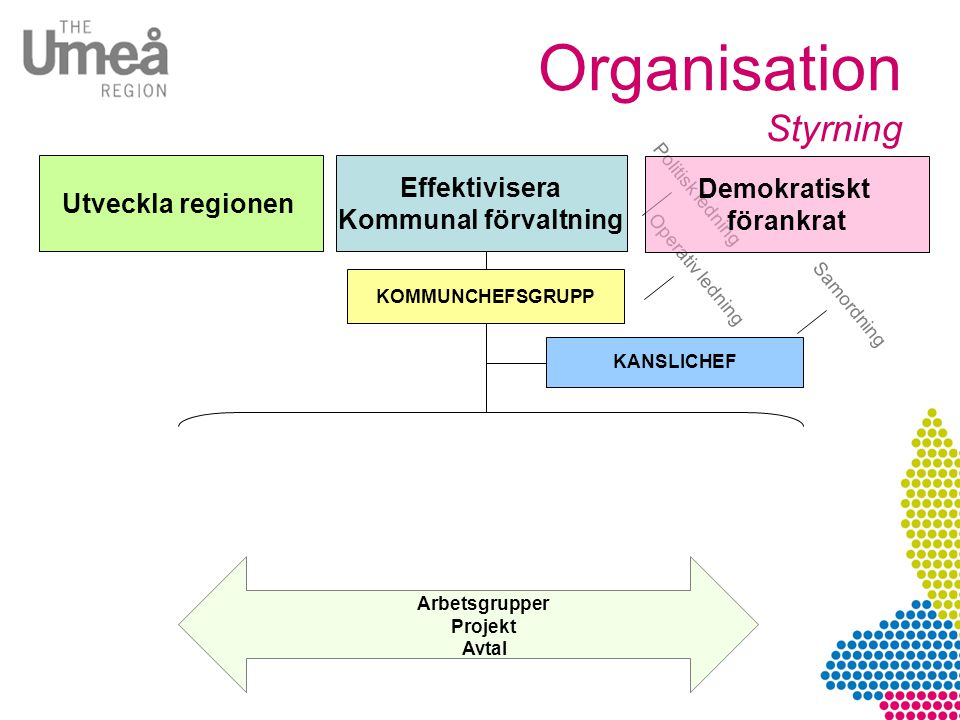 Organisation Styrning