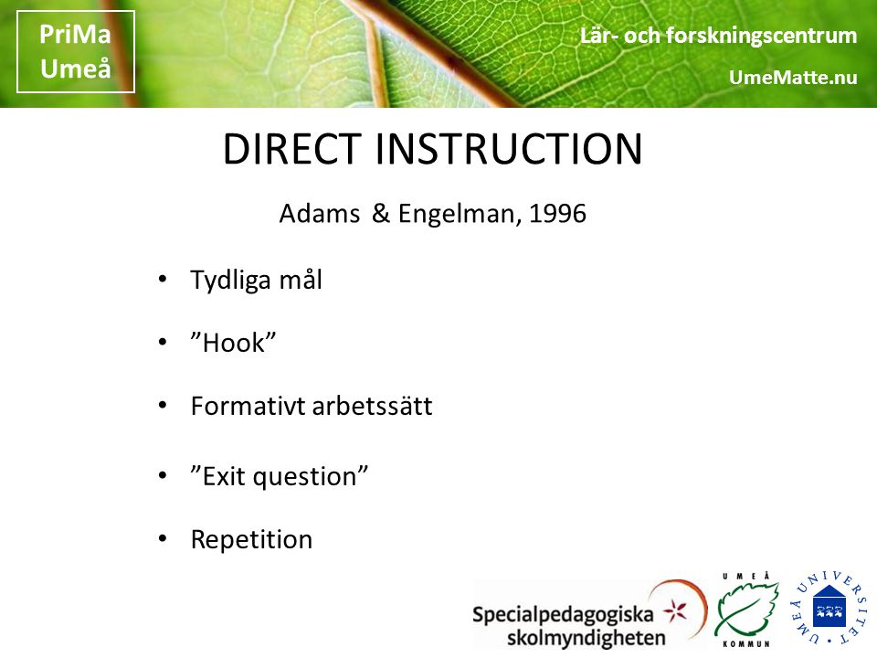 DIRECT INSTRUCTION Adams & Engelman, 1996